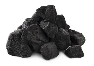Раздел полезные ископаемые Полезные ископаемые Каменный уголь